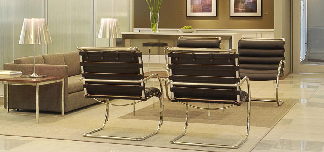 Strange Mr Lounge Chair Mies Van Der Rohe Squirreltailoven Fun Painted Chair Ideas Images Squirreltailovenorg